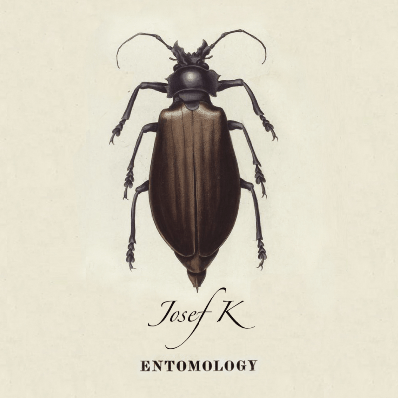 Josef K - Entomology