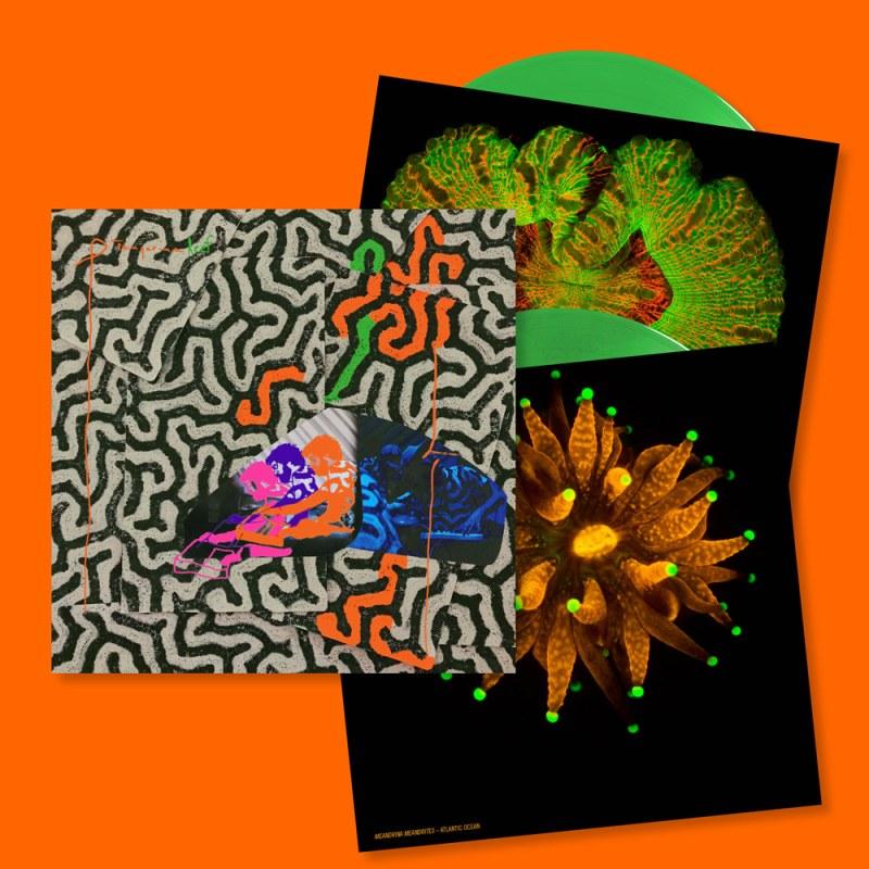 3ecc360c56f Tangerine Reef · Buy Ltd edition double LP ...