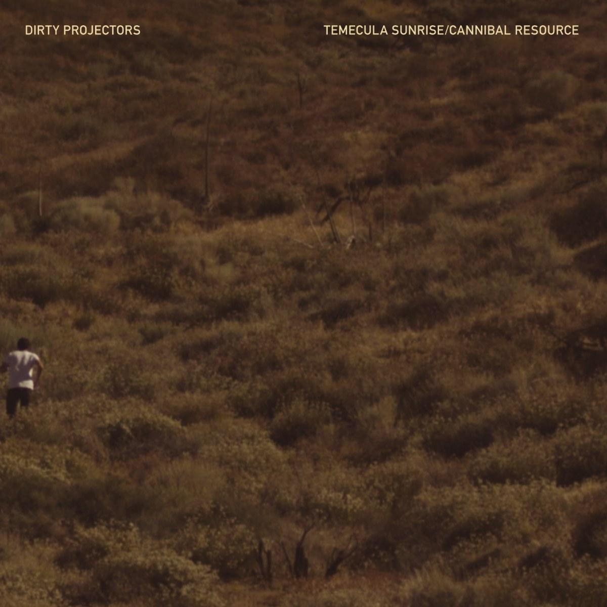 Dirty Projectors - Temecula Sunrise / Cannibal Resource (12