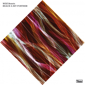 Wild Beasts - Reach A Bit Further