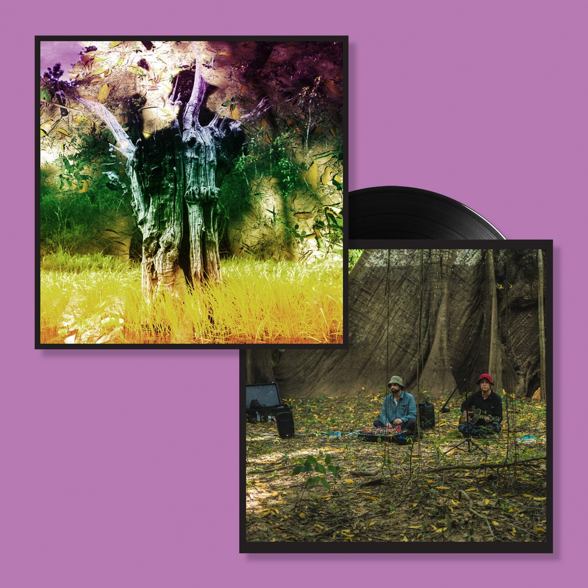 Animal Collective - Meeting Of The Waters (RSD EP) | Domino Mart