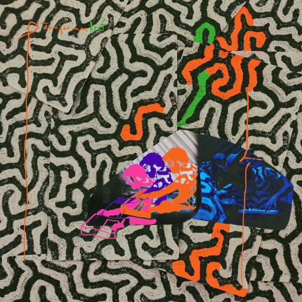 Animal Collective announce audiovisual album 'Tangerine Reef'